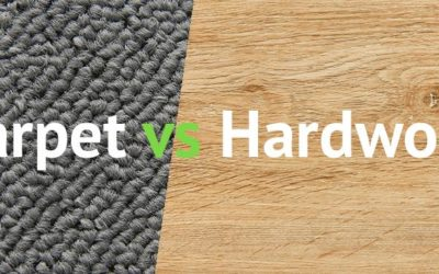 Carpet and Hardwood Both on Sale! Why Choose?